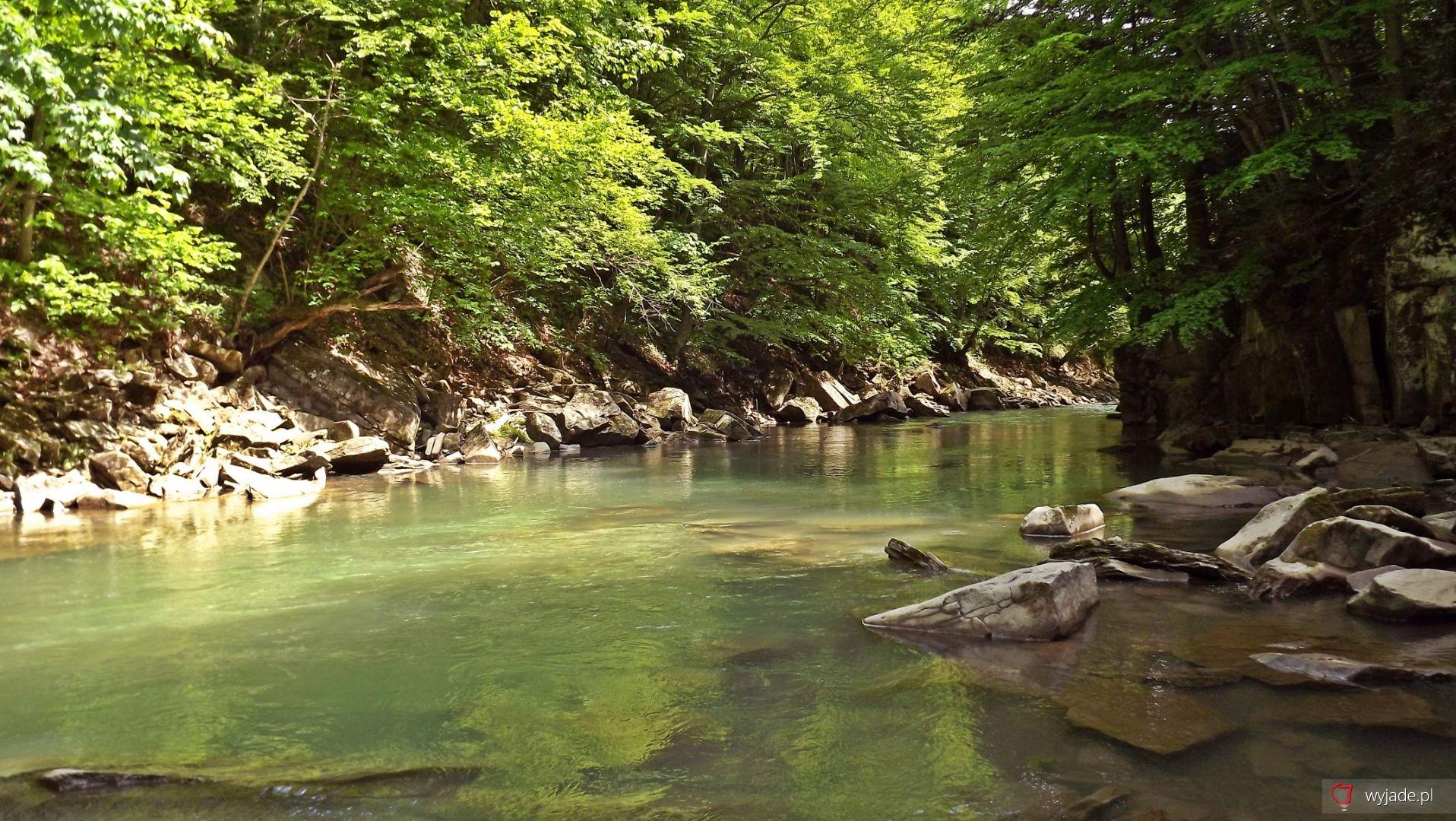 Rezerwat przyrody Sine Wiry