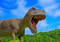 Bałtowski Kompleks Turystyczny - Park Dinozaurów JuraPark