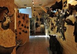 Muzeum Myślistwa i Łowiectwa