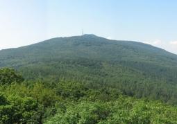 Rezerwat przyrody Góra Ślęża