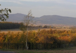 Góra Radunia - Rezerwat przyrody Góra Radunia