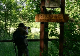 Puszcza Białowieska - bliżej natury