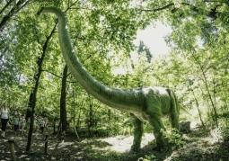 Zdjęcie: Park Dinozaurów