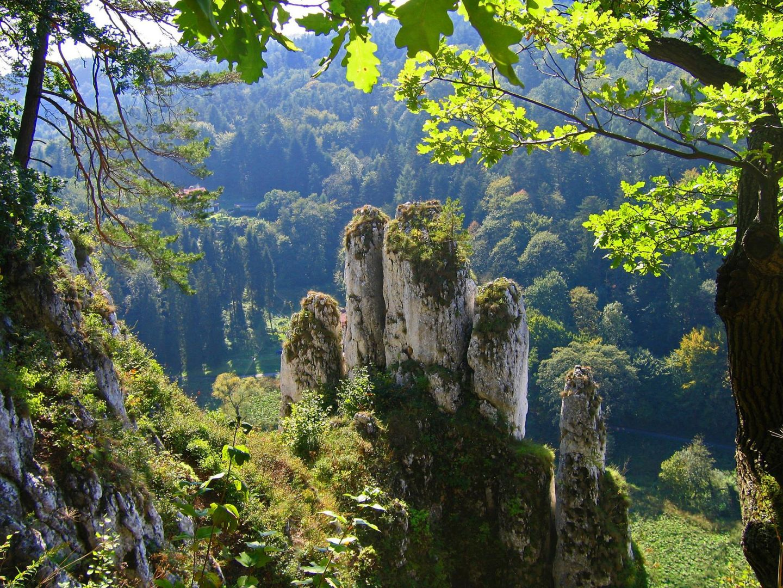 Widok na Rękawicę z Koronnej Góry