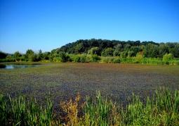 Rezerwat Przyrody Lisia Góra - Rzeszów
