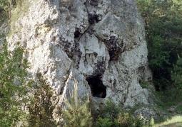 Góra św. Genowefy