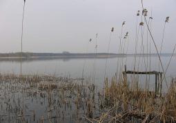 Zdjęcie: Jezioro Powidzkie