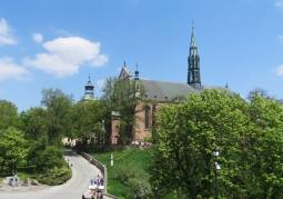 Zdjęcie: Katedra wiosną