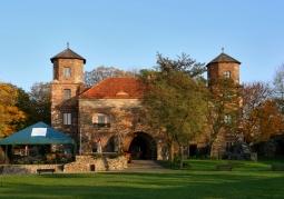 Zamek w Toszku - Toszek