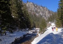 Potok Kościeliski - Dolina Kościeliska