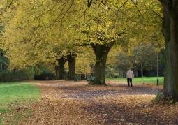 Park Kasprowicza wczesną jesienią