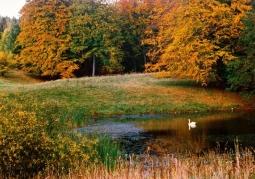 Natura Ińskiego Parku Krajobrazowego