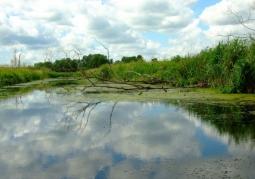 Cedyński Park Krajobrazowy