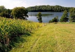 Rezerwat przyrody Jezioro Hańcza - Suwalski Park Krajobrazowy