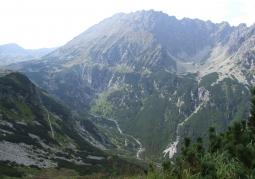 Dolina Roztoki widziana ze szlaku do Morskiego Oka