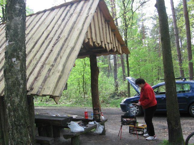 Piknik w lesie