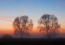 Zachód słońca w kampinosie