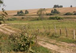 Zdjęcie: Krajobraz wsi podlaskiej