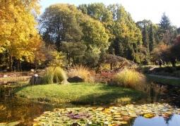 Arboretum Szkoły Głównej Gospodarstwa Wiejskiego - Rogów