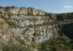 Rezerwat skalny im. Jana Czarnockiego