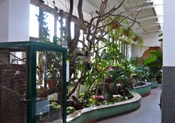 Ogród Zoobotaniczny - Toruń