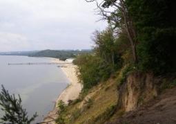 Rezerwat przyrody Kępa Redłowska - Gdynia