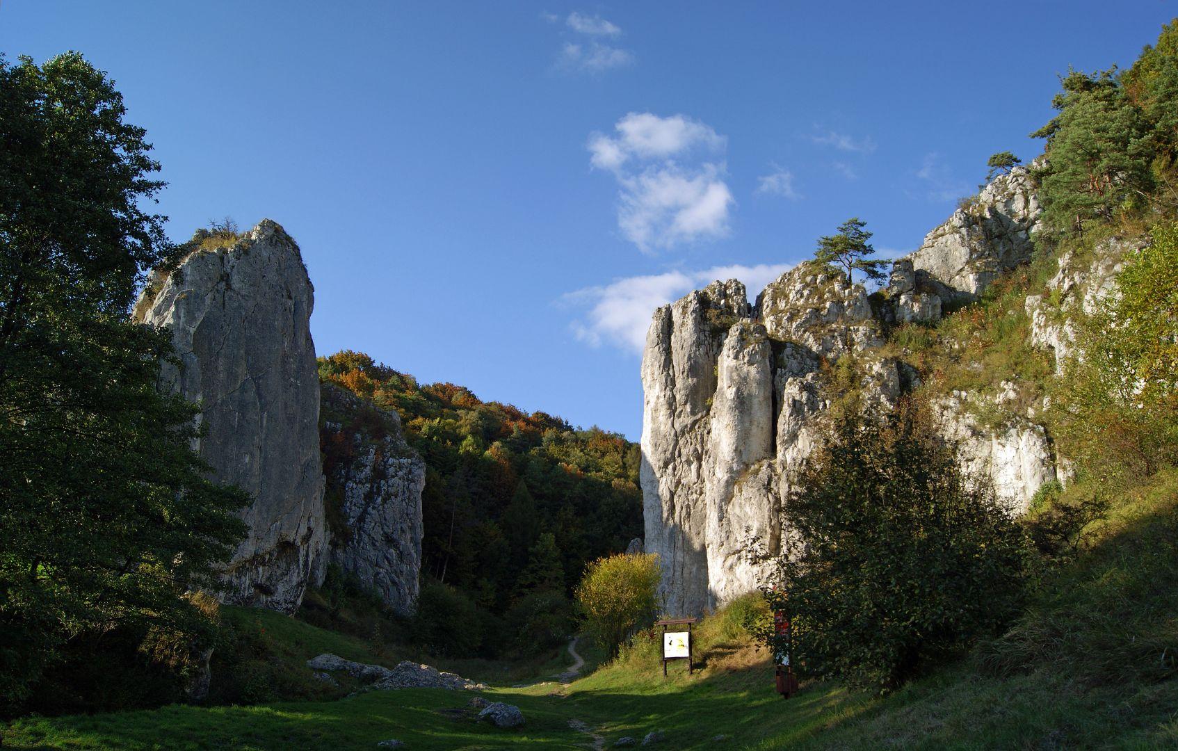 Brama od strony Bolechowic