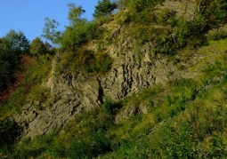 Rezerwat przyrody Wilcza Góra - Złotoryja