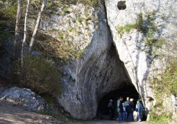 Jaskinia Nietoperzowa - Park Krajobrazowy Dolinki Krakowskie