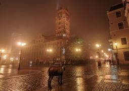 Ratusz Staromiejski we mgle