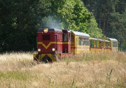 Pociąg turystyczny Żuławskiej Kolei Dojazdowej