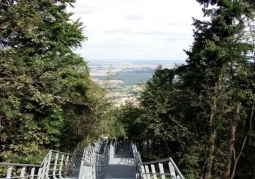 Platforma widokowa - Łysa Góra