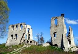 Ruiny zamku szlacheckiego - Mokrsko Górne