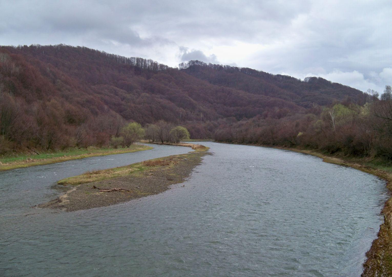 Rezerwat przyrody Krywe