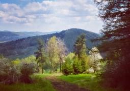 Widok na Park Krajobrazowy Gór Słonnych