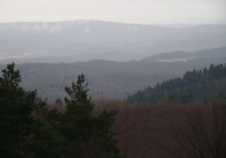 Rezerwat przyrody Nad Trzciańcem
