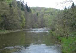 Osława wiosną