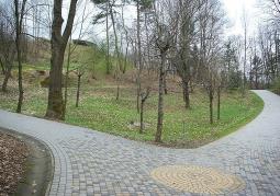 Alejki w parku