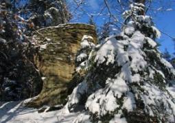 Kamień Orelecki - Myczkowce