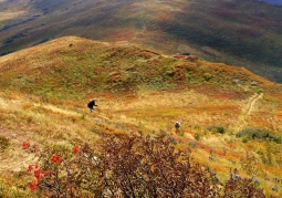 Bukowe Berdo jesienią