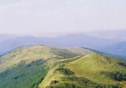 Widok na grzbiet Bukowego Berda