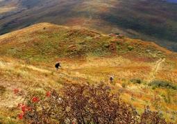Bukowe Berdo - Bieszczadzki Park Narodowy