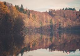Rezerwat Krajobrazowy Dolina Pięciu Jezior - Drawski Park Krajobrazowy