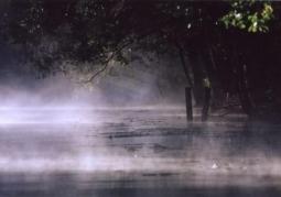 Krutynia w mgle