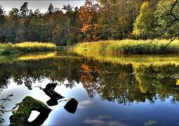 Rezerwat przyrody Krutynia Dolna - Mazurski Park Krajobrazowy