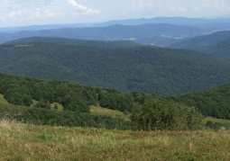 Pasmo Jawornika, widok z Połoniny Wetlińskiej