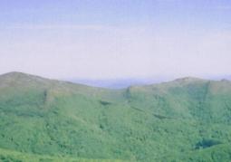 Rozsypaniec po prawej, widok z Tarnicy