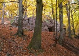 Rezerwat przyrody Kamień Michniowski - Sieradowicki Park Krajobrazowy