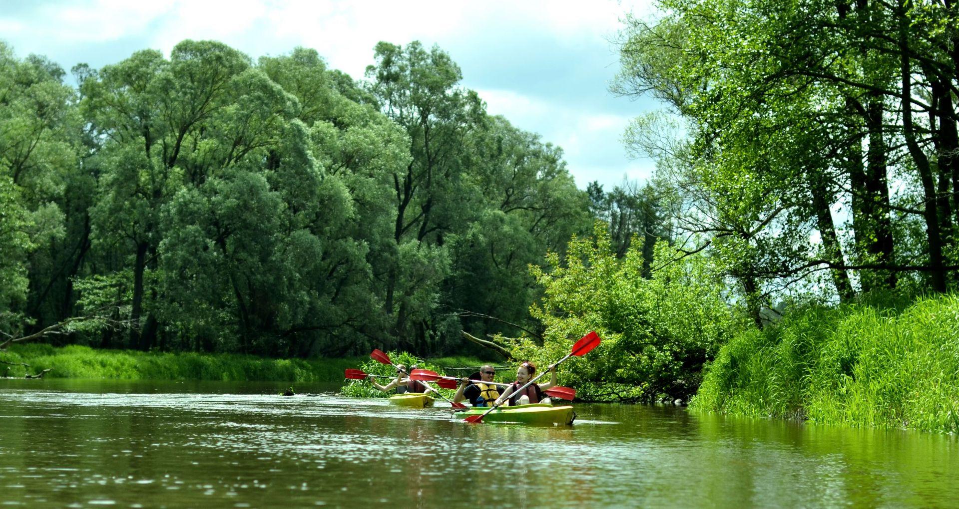Spływy kajakowe Bugiem i Włodawką