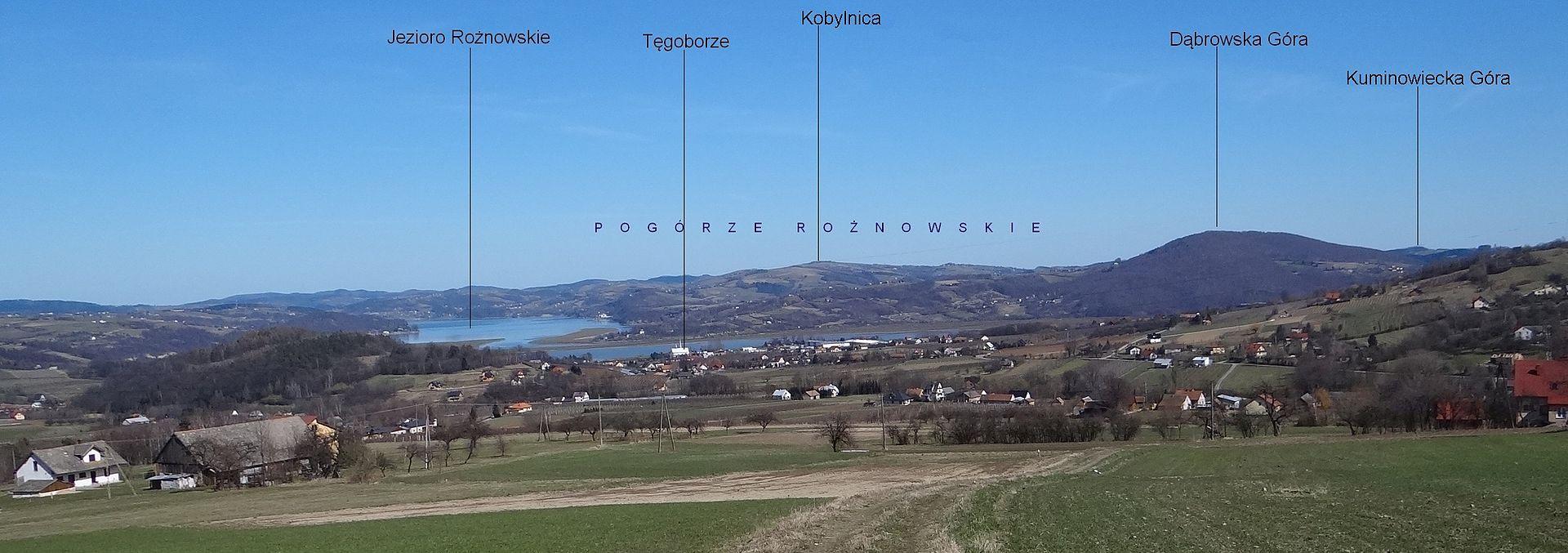 Pogórze Rożnowskie